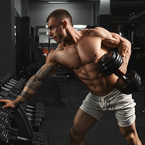 Muscle Building Articles
