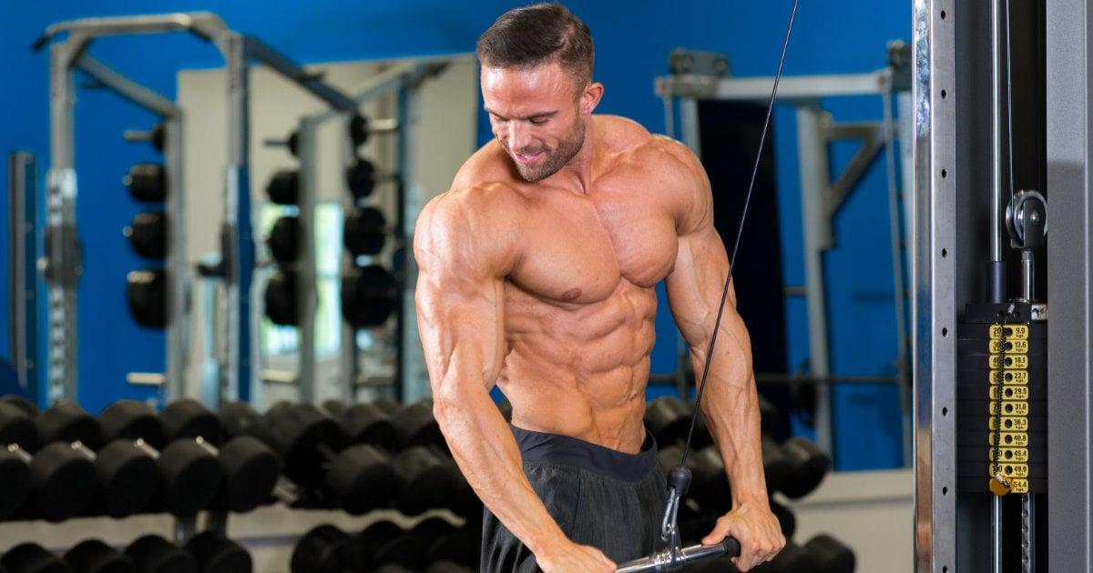 12 Week Fat Destroyer: Complete Fat Loss Workout & Diet Program