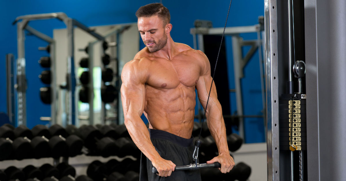 Tips for Beginning Vegan Bodybuilders