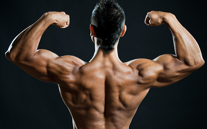 Most effective exercises to build back muscle muscle amp strength