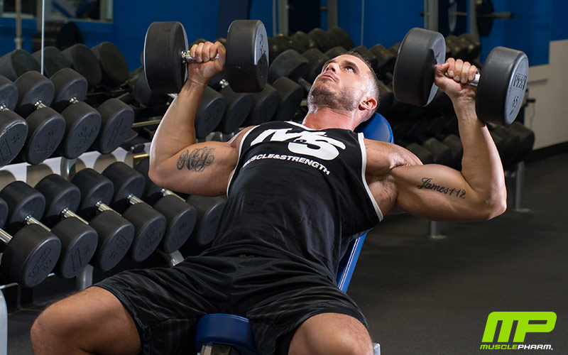 Boyce's Choices: Top 3 Exercises for Chest Muscle Development