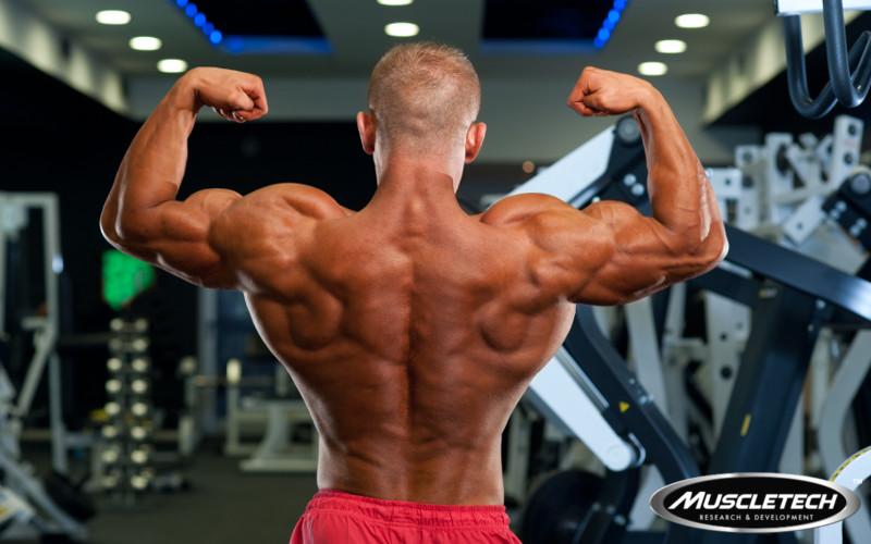 5 Crazy But Effective Back Building Exercises
