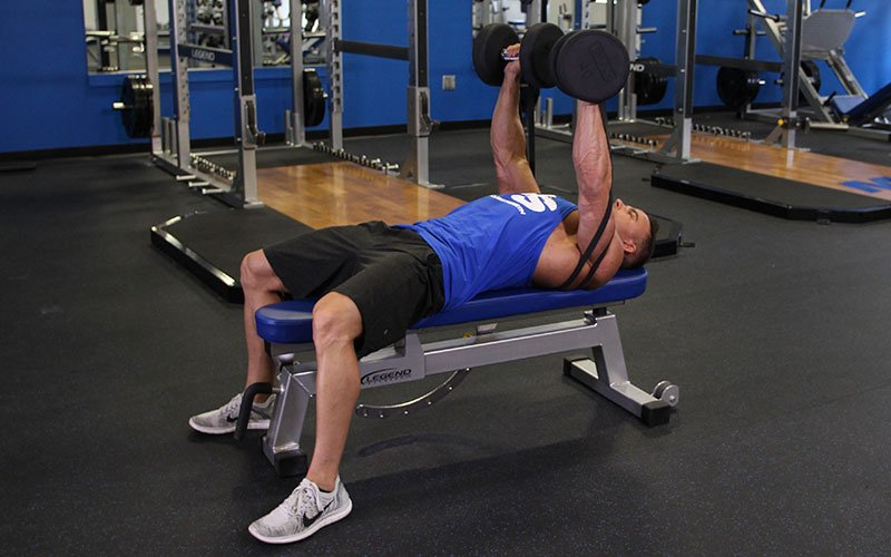 Resistance Banded Dumbbell Bench Press Video Exercise