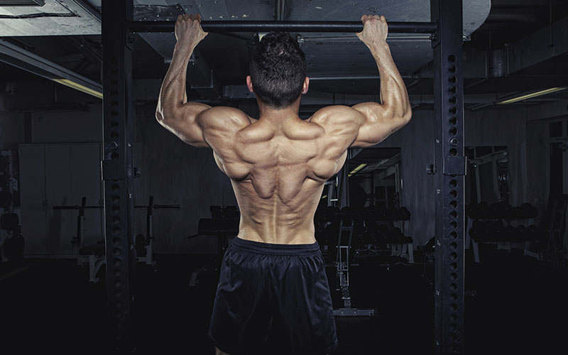Implementing Eccentric Training For Muscle Growth