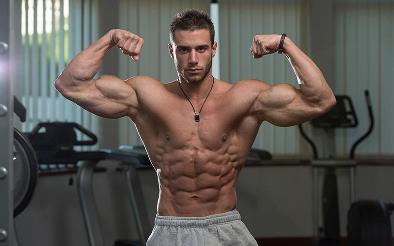 Ectomorph Muscle Building: Nutrition And Training Basics For Muscle Growth