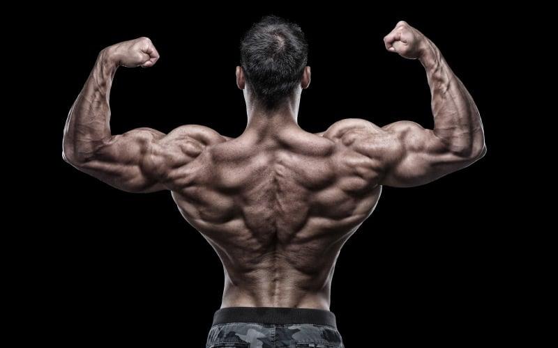 Betting on ms machine bodybuilder brand new sports betting sites
