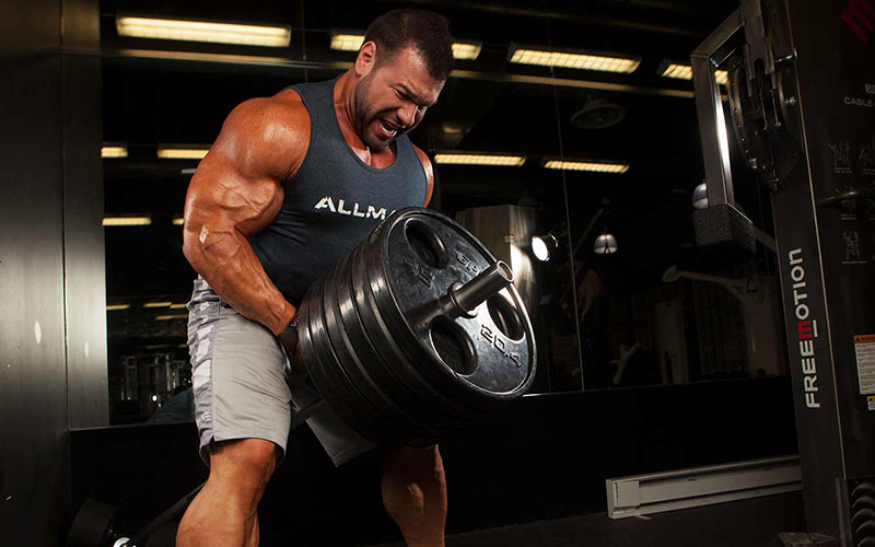 Lions Mane The Nootropic For Increased Workout Focus