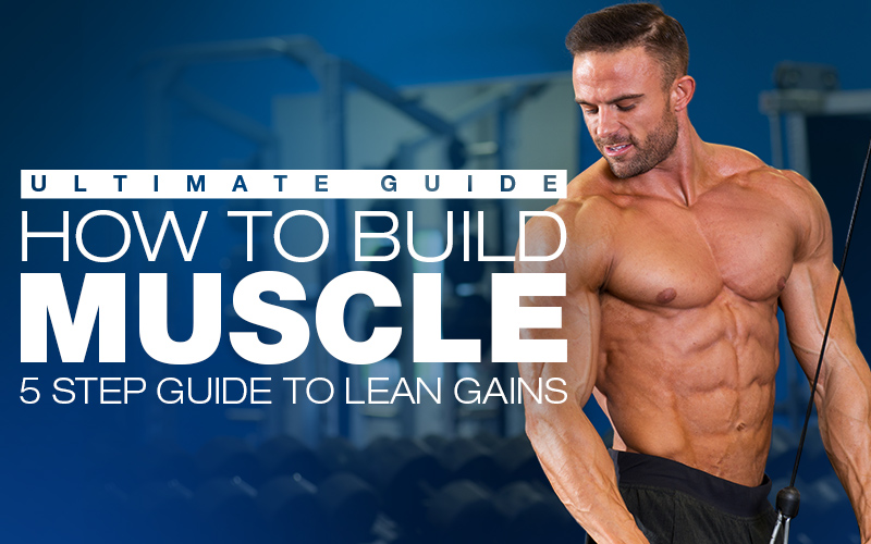 How to build muscle workouts diet plans supplements how to build muscle 5 step guide to lean gains malvernweather Choice Image