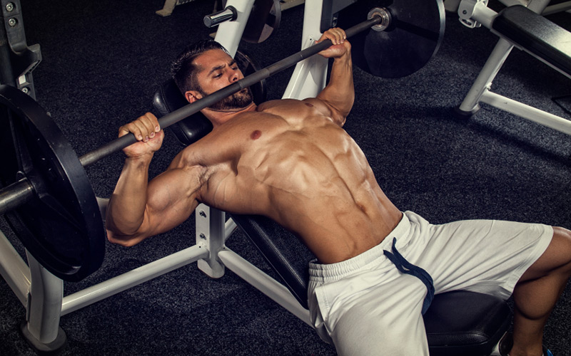 can you build muscle on the keto diet bench press