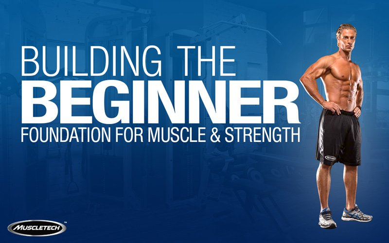 Building The Beginner Foundation For Muscle Strength