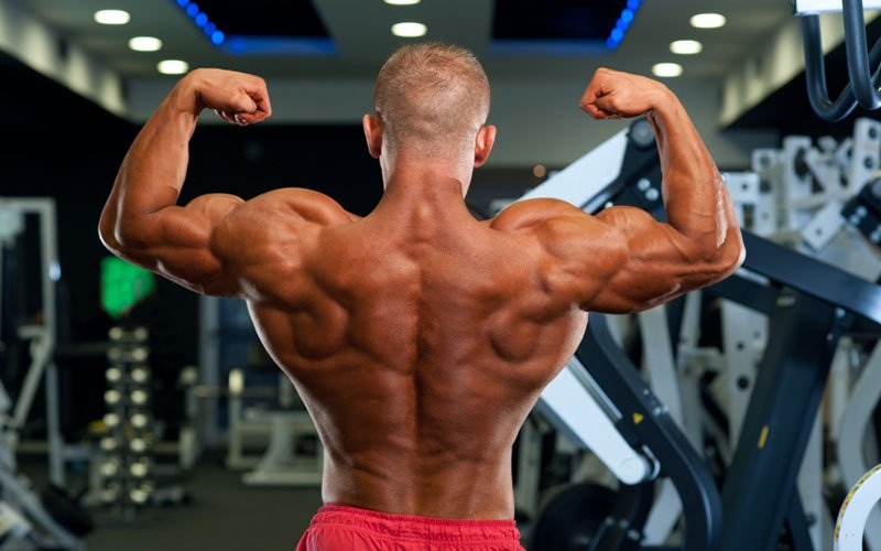 Roger Lockridges Intense 4 Week Superset Back Workout