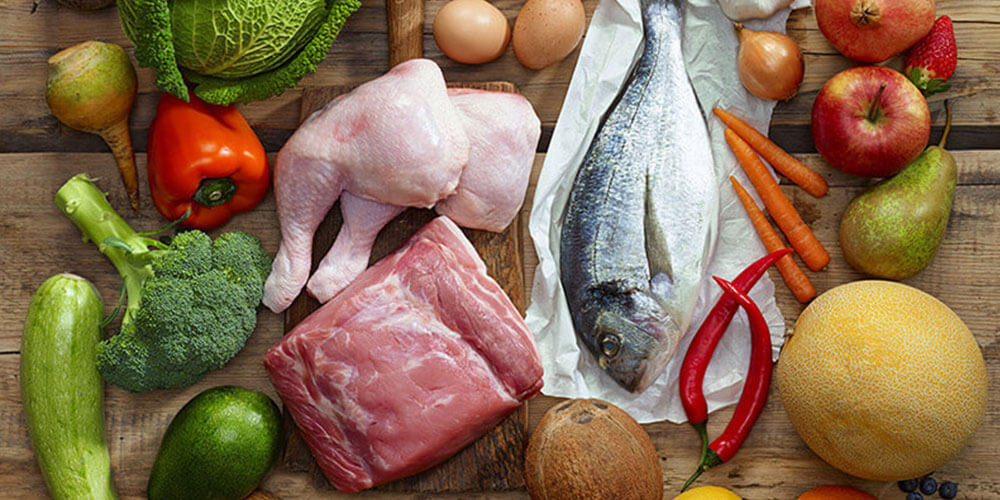 The Paleolithic (Paleo) Diet Plan Guide