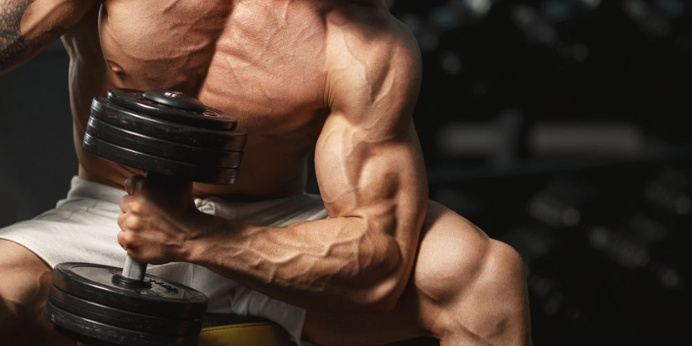 Muscular man doing single arm isolation bicep curls.
