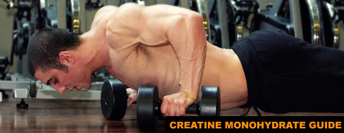 Creatine Monohydrate Expert Guide