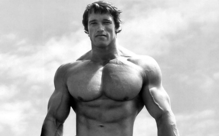 64 arnold schwarzenegger quotes on bodybuilding motivation 64 arnold schwarzenegger quotes on bodybuilding motivation success muscle strength malvernweather Gallery