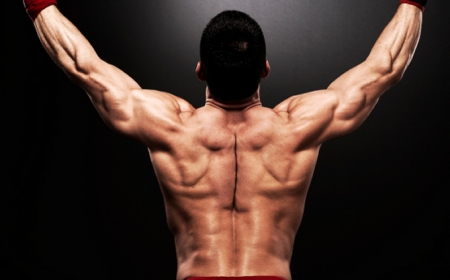 How To Build Back Muscle Size: 8 Tips For An Impressive Back