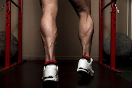 Standing Calf Raise Vs Seated Calf Raise Which Builds