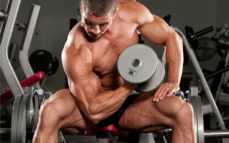 Muscle Building Supplementation For Hardgainers