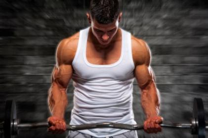 Ranking The Best Muscle Building Exercises: From Beast To Least