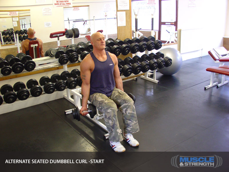 Alternate Seated Dumbbell Curl: Video Exercise Guide & Tips