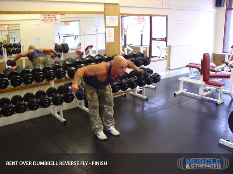 Dumbbells For Sale >> Bent Over Dumbbell Reverse Fly Video Exercise Guide & Tips ...