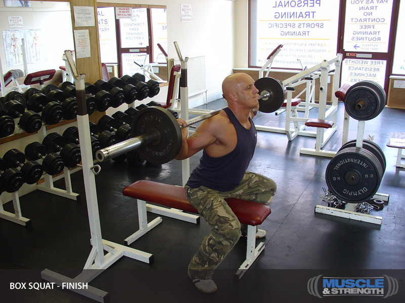 Box Squat (shown with bench): Video Exercise Guide & Tips