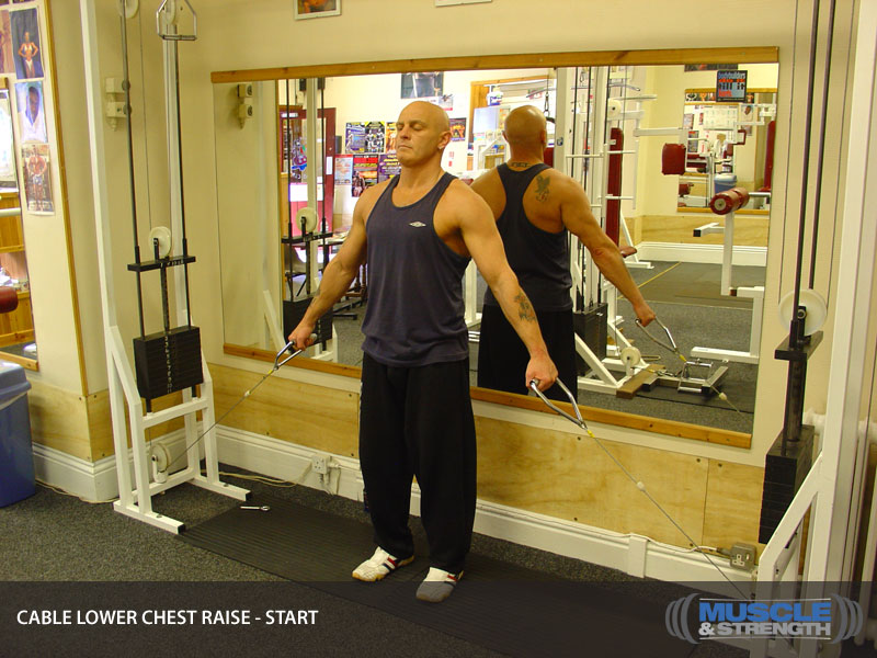 Cable Lower Chest Raise Video Exercise Guide Amp Tips