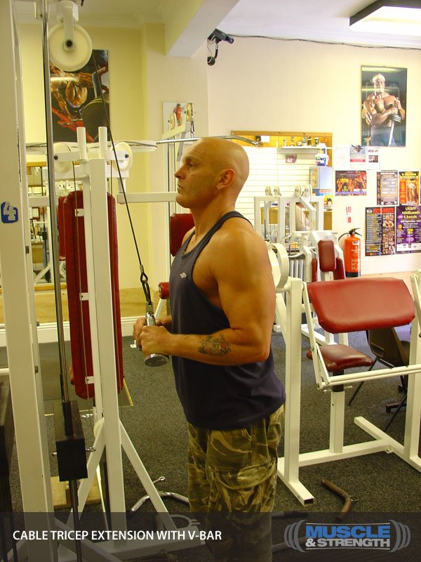 cable tricep extension with v
