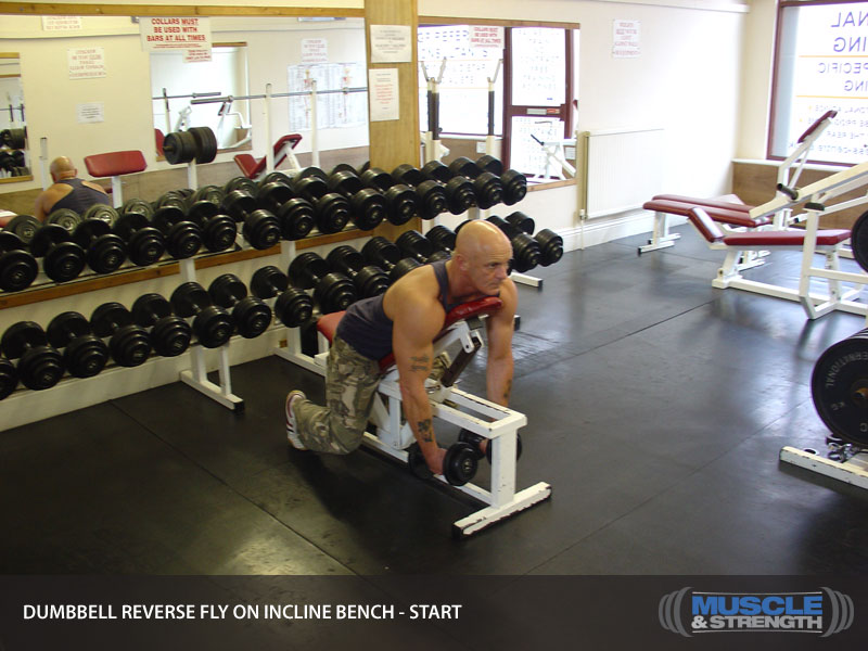 Dumbbell Reverse Fly On Incline Bench Video Exercise