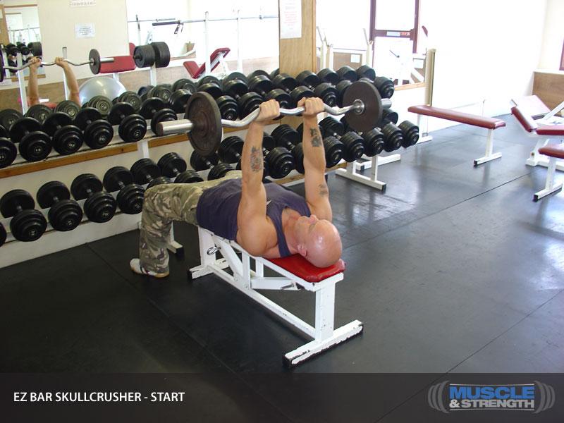 Ez Bar Skullcrusher Video Exercise Guide Amp Tips Muscle