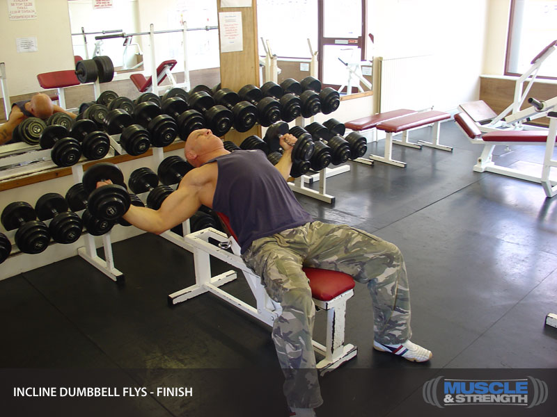 Incline Dumbbell Flys Video Exercise Guide Amp Tips