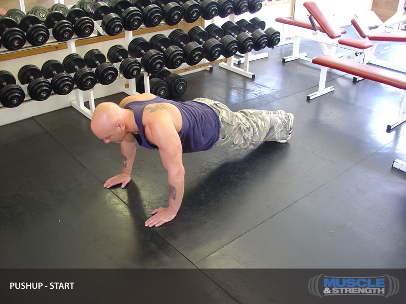 Push Up Video Exercise Guide  Tips  Muscle  Strength-1229