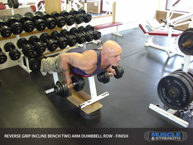Reverse Grip Incline Bench Two Arm Dumbbell Row Video Exercise