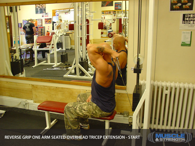 Reverse Grip One Arm Seated Overhead Tricep Extension