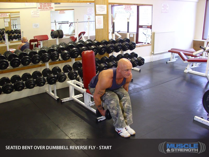 Dumbbells For Sale >> Seated Bent Over Dumbbell Reverse Fly Video Exercise Guide ...