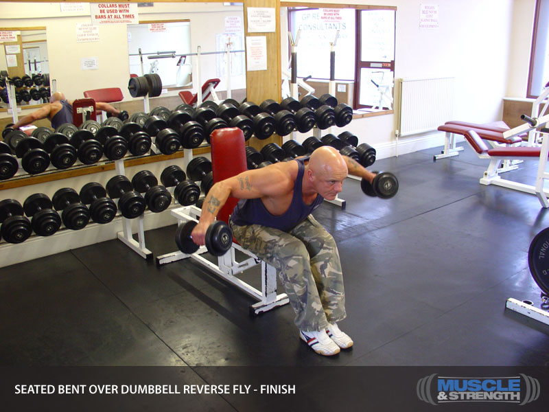 Seated Bent Over Dumbbell Reverse Fly Video Exercise