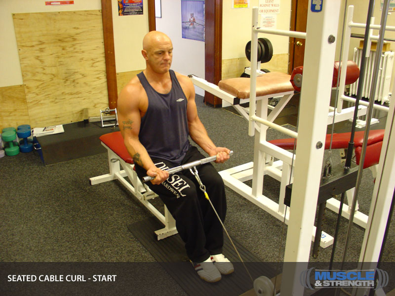 Seated Cable Curl Video Exercise Guide Amp Tips
