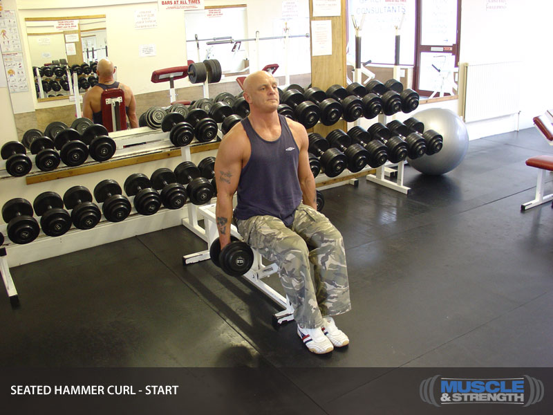 Seated Hammer Curl: Video Exercise Guide & Tips