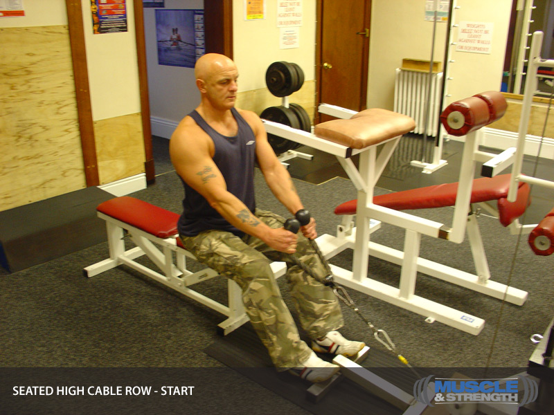 Low Back Extension Machine Seated High Cable Row:...