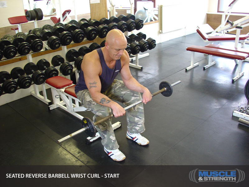 Seated Reverse Barbell Wrist Curl Video Exercise Guide