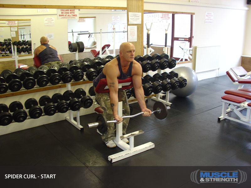 Spider Curls Incline Bench Part - 39: Click To Enlarge