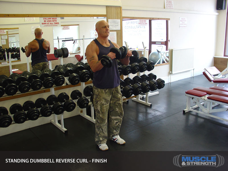 Standing Dumbbell Reverse Curl Video Exercise Guide Amp Tips