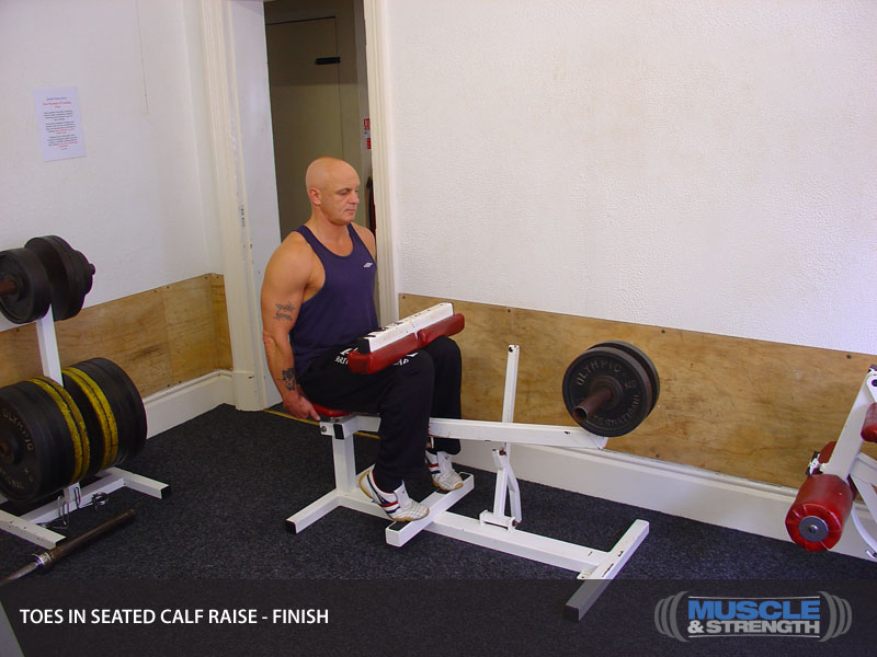 Toes In Seated Calf Raise Video Exercise Guide Amp Tips