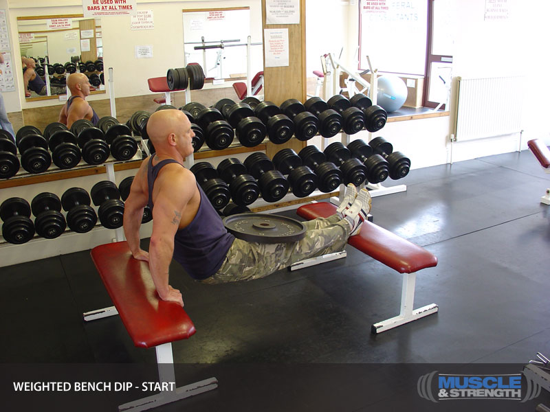 Wondrous Weighted Bench Dips Video Exercise Guide Tips Pdpeps Interior Chair Design Pdpepsorg