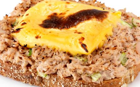 Tuna and Cheese Melt Patty