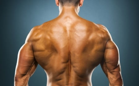 3 Week Muscular Back Building Rotation