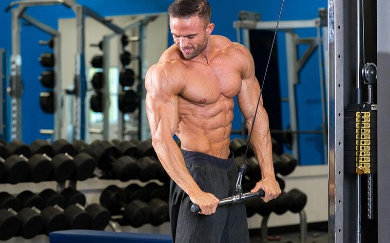 12 Week Fat Destroyer Workout