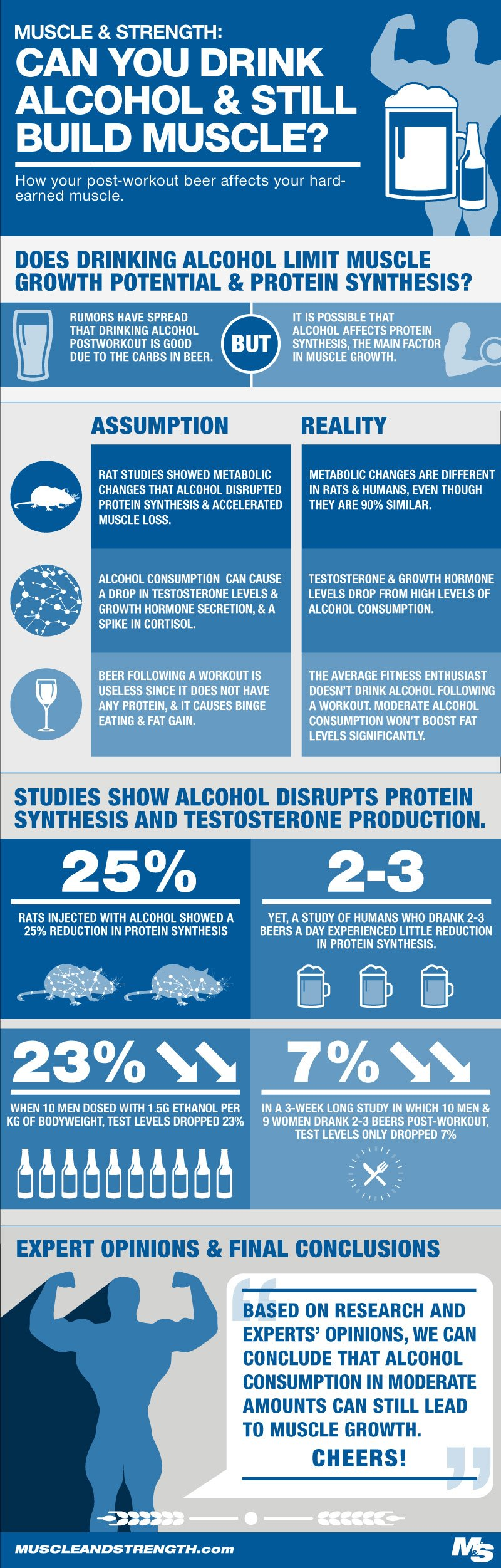 Alcohol and Muscle Building Infographic