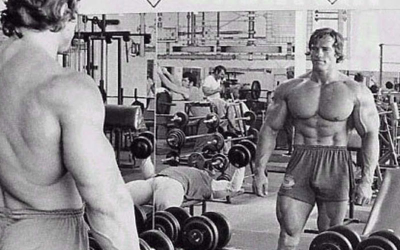 Arnold Schwarzenegger's chest and back supersets
