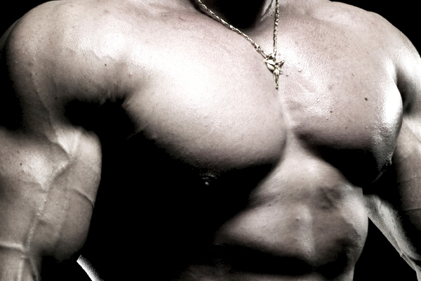 Transformation and Supplement Training Log